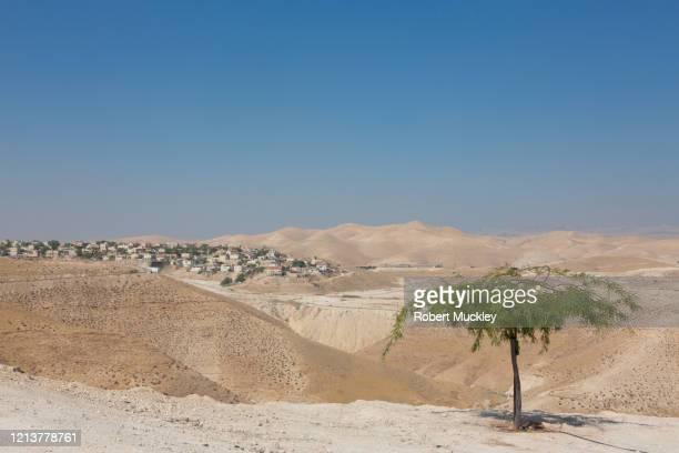 jewish settlement in the west bank - イスラエルパレスチナ問題 ストックフォトと画像