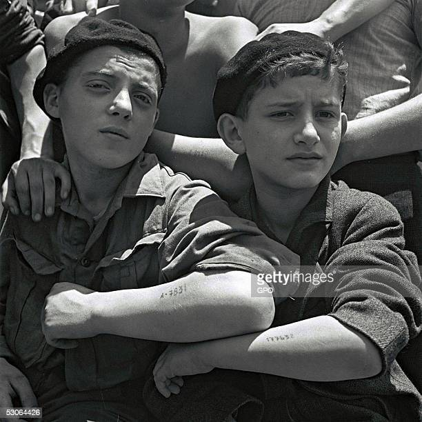 Jewish youth rescued from the Auschwitz Nazi concentration camp show their camp tattooes on their forearms on board the refugee immigration ship...