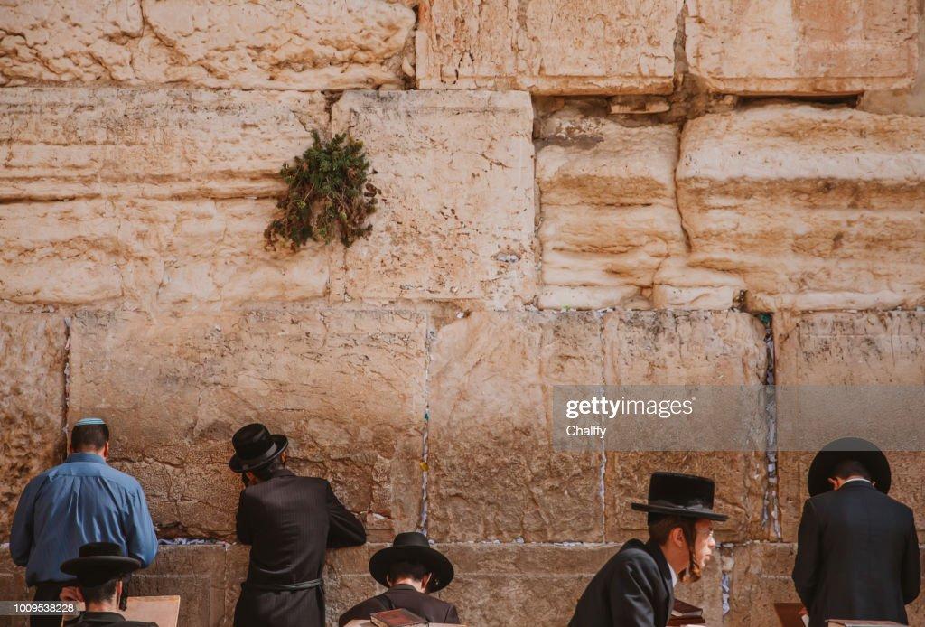 Jews Praying at Western Wall : Stock Photo