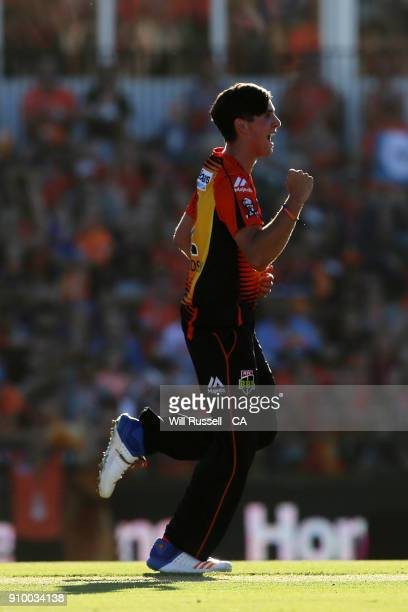 Jhye Richardson of the Scorchers celebrates after taking the wicket of Alex Carey of the Strikers during the Big Bash League match between the Perth...