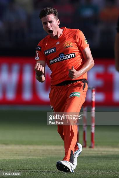 Jhye Richardson of the Scorchers celebrates the wicket of Moises Henriques of the Sixers during the Big Bash League match between the Perth Scorchers...
