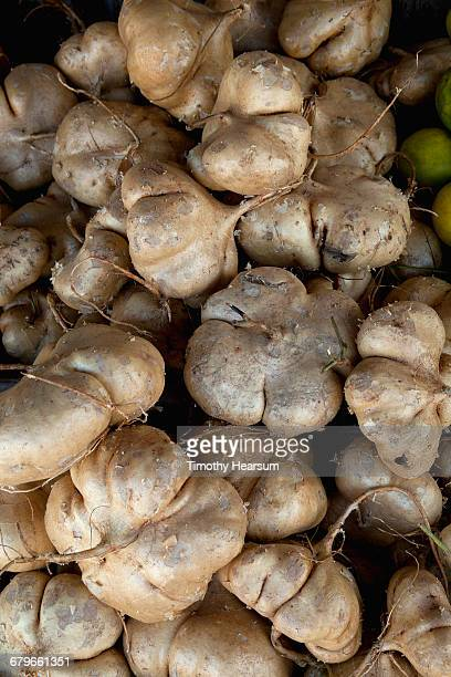 jicama for sale at a local produce stand - timothy hearsum stock pictures, royalty-free photos & images