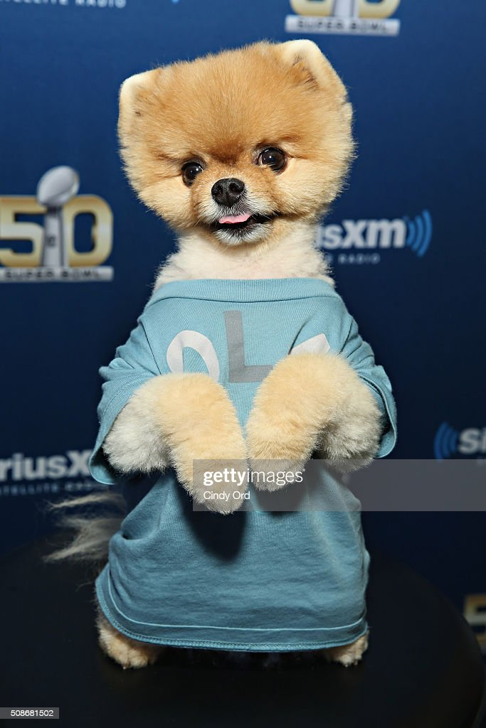 Jiffpom visits the SiriusXM set at Super Bowl 50 Radio Row at the Moscone Center on February 5, 2016 in San Francisco, California.