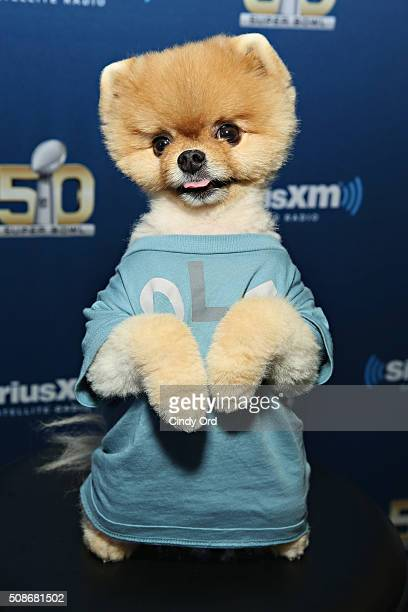 Jiffpom visits the SiriusXM set at Super Bowl 50 Radio Row at the Moscone Center on February 5 2016 in San Francisco California