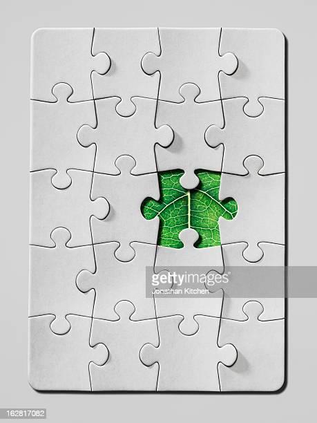 Jigsaw puzzle leaf