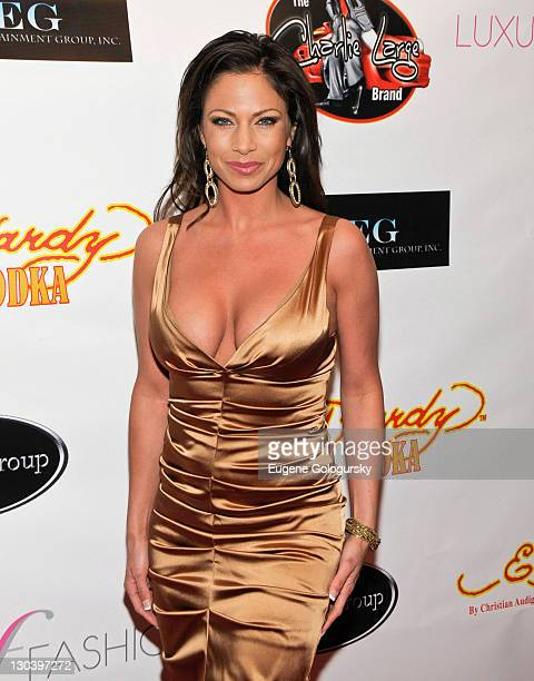 Jill Nicolini attends the Faces of Fashion Week soiree at RDV on February 17 2009 in New York City