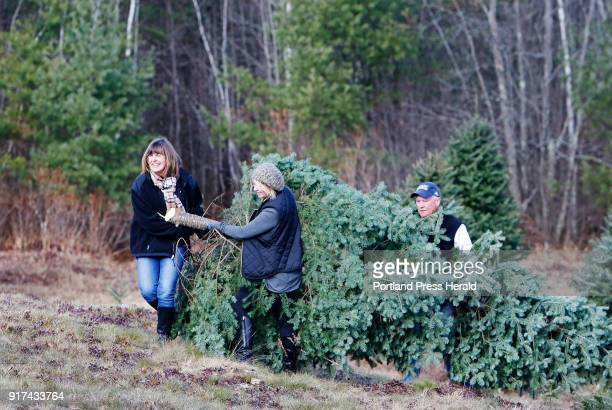 Jill OBrien of Kennebunk carries out a 15foot tree with daughter Shelagh and husband Tim at Holmes Tree Farm The OBriens who will put the tree in...