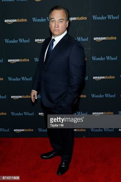 Jim Belushi attends the premiere of Wonder Wheel at Museum of Modern Art on November 14 2017 in New York City