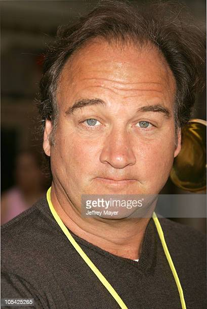 Jim Belushi during Disneyland 50th Anniversary Happiest Homecoming On Earth Celebration at Disneyland in Anaheim California United States