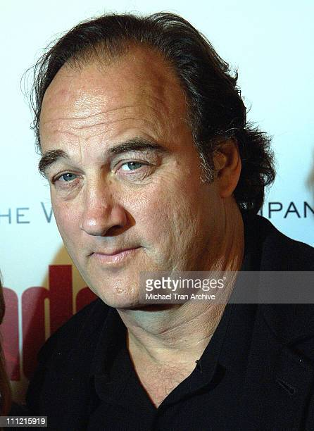 Jim Belushi during The Weinstein Company's The Matador Los Angeles Premiere Arrivals at Westwood Crest Theater in Westwood California United States