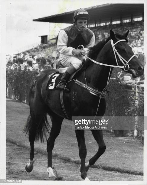 Jim Cassidy returns to scale on Francette after winning the Tegel Turkeys Handicap at Rosehill December 14 1984