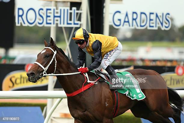 Jim Cassidy rides Press Statement to win race 1 The TAB Place Multi Plate during Sydney Racing at Rosehill Gardens on May 30 2015 in Sydney Australia