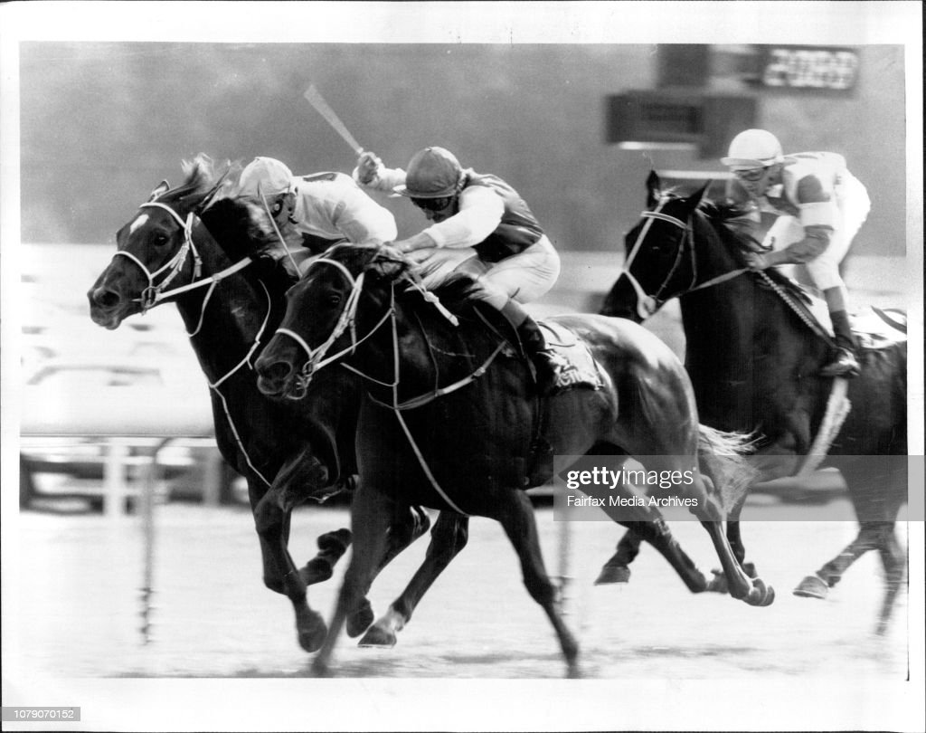 Jim Cassidy wields the whip as Sea Pictures beats Colour Page (Nigel Tiley) in the Gosford Cup. Riverdale (Noel Barker) is third. : News Photo