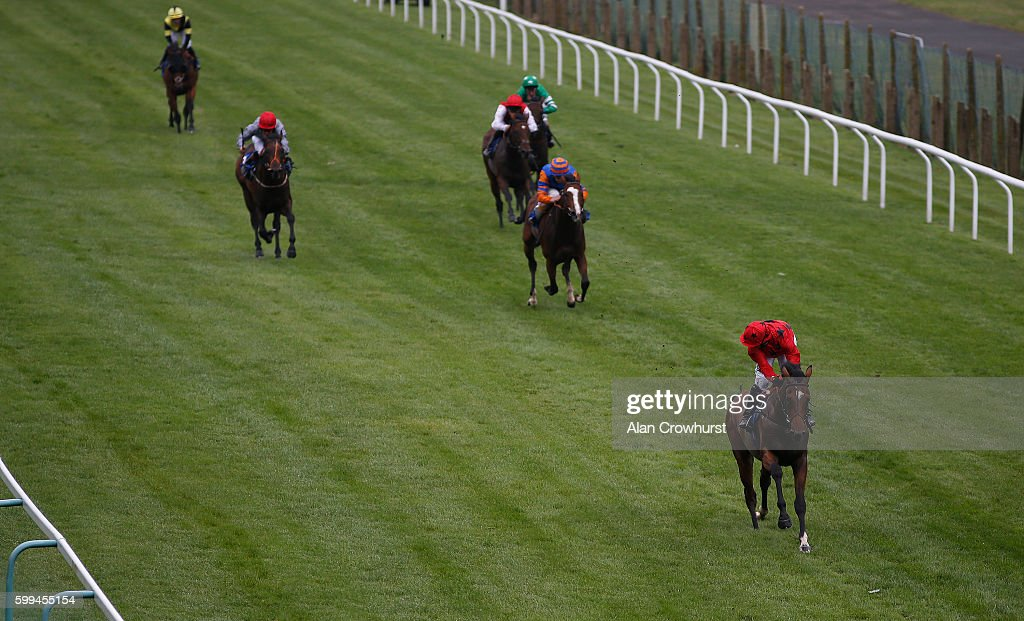 Jim Crowley riding Colibri looks around for any danger as they easily win The British Stallion Studs EBF Maiden Stakes at Brighton racecourse on Septmber 05, 2016 in Brighton, England.