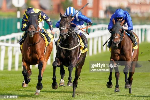 Jim Crowley riding Elarqam win The Dubai Duty Free Legacy Cup Stakes at Newbury Racecourse on September 19 2020 in Newbury England Owners are allowed...