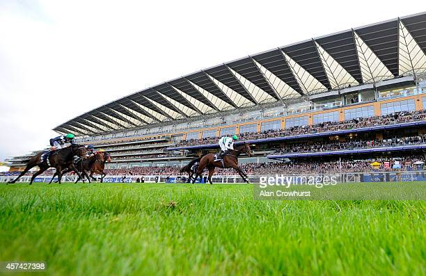 Jim Crowley riding Madame Chiang win The Qipco British Champions Fillies Mares Stakes at Ascot racecourse on October 18 2014 in Ascot England