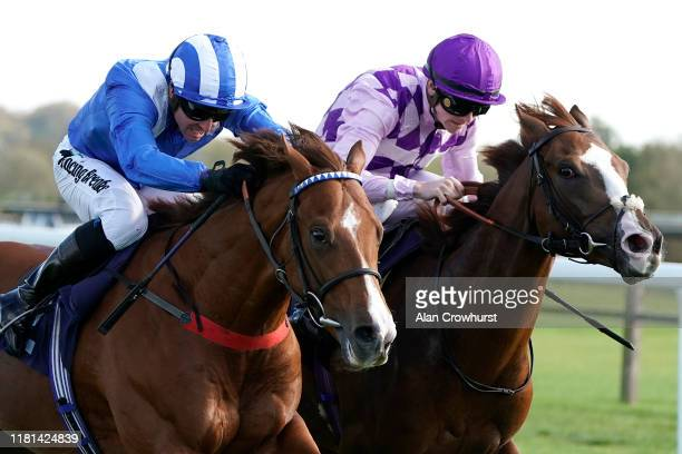 Jim Crowley riding Raasel win The starsportsbet Novice Stakes at Bath Racecourse on October 16 2019 in Bath England