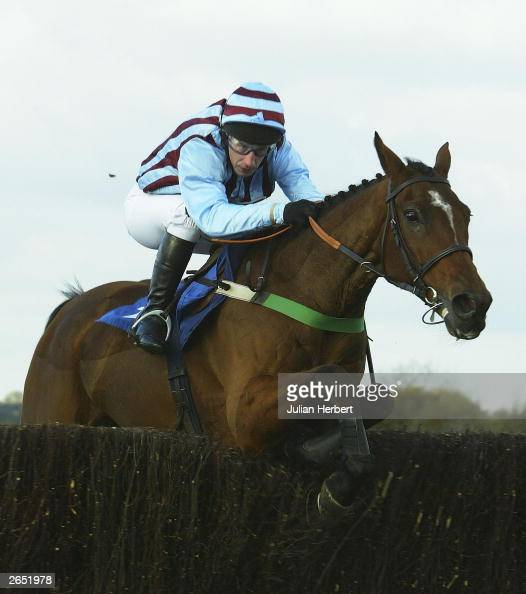 Edredon English.Jim Culloty And Edredon Bleu Clear An Early Fence Before Going On To