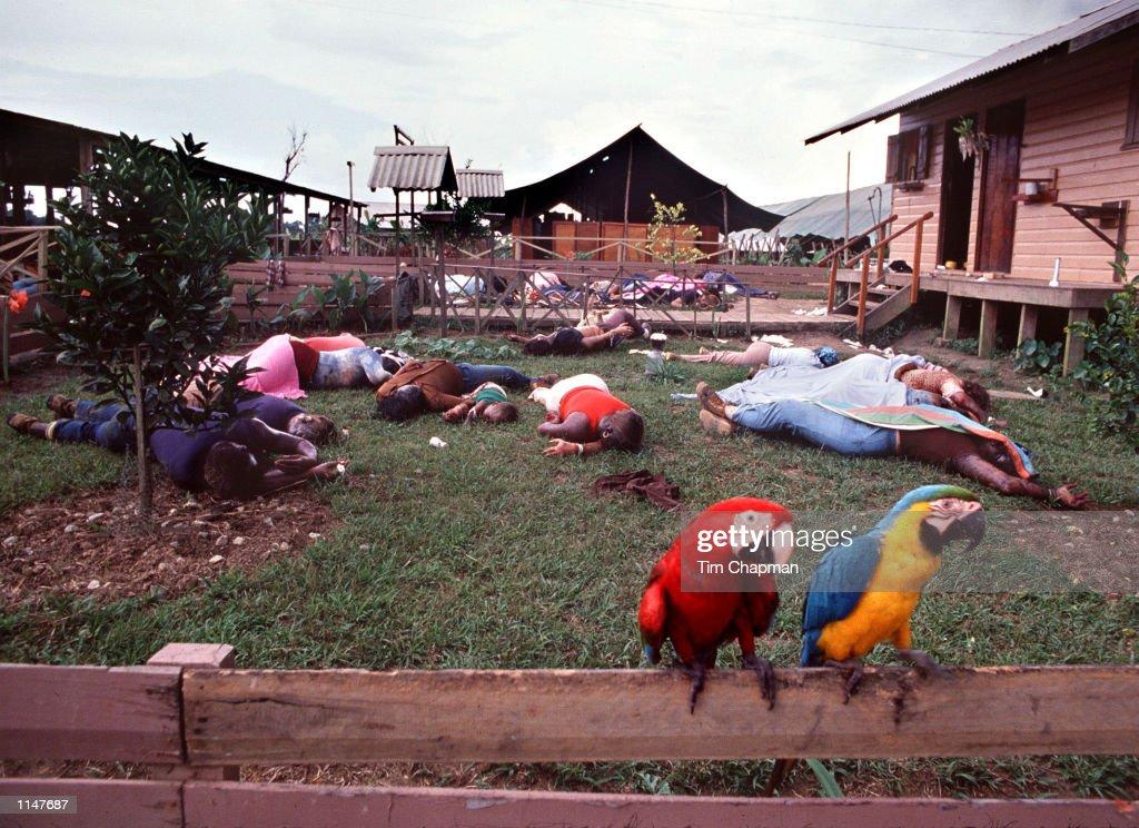 Jonestown Massacre : Foto di attualità