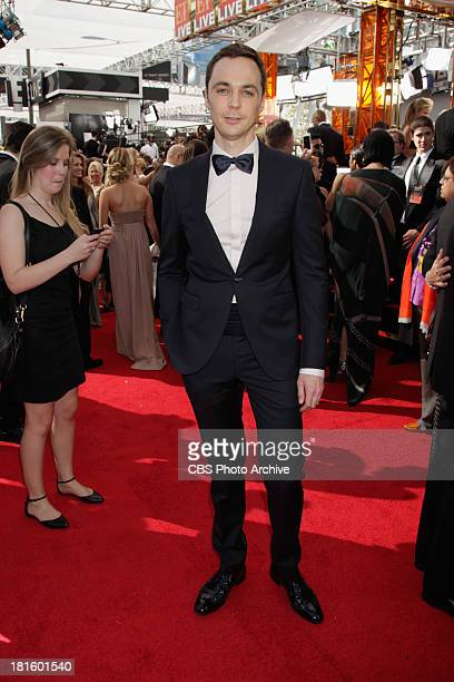 Jim Parsons from The Big Bang Theory on the red carpet for the 65th Primetime Emmy Awards which will be broadcast live across the country 8001100 PM...