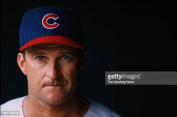 Jim Riggleman of the Chicago Cubs looks on against the St Louis Cardinals at Busch Stadium on July 21 1996 in St Louis Missouri The Cardinals...