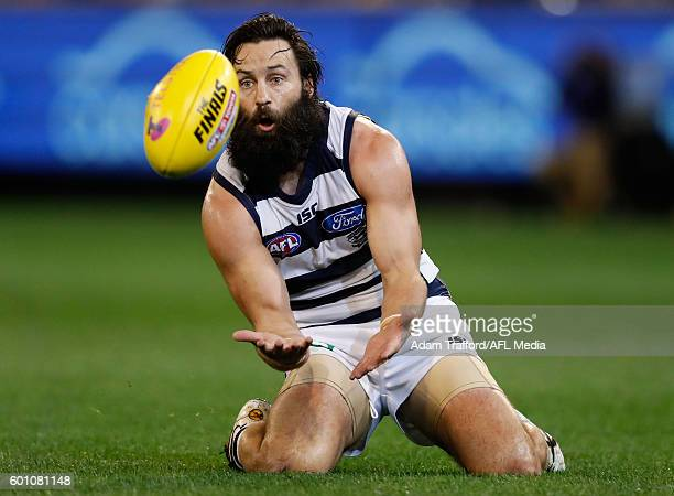 Jimmy Bartel of the Cats marks the ball during the 2016 AFL Second Qualifying Final match between the Geelong Cats and the Hawthorn Hawks at the...