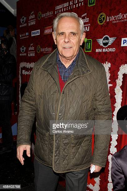Jimmy GimenezArnau attends Miguel de Molina al Desnudo premiere at the Santa Isabel Theater on November 4 2014 in Madrid Spain