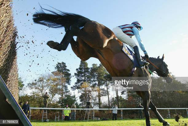 Jimmy Murphy riding Best Mate to victory during the The William Hill Steeple Chase on November 19, 2004 at Exeter Racecourse in Exeter, England.