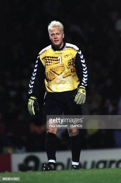 Jimmy Nielsen Denmark goalkeeper