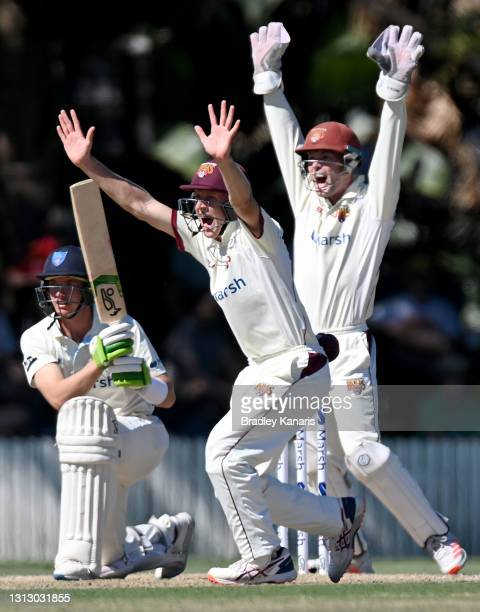 Jimmy Peirson and Bryce Street of Queensland successfully appeal for the wicket of Baxter Holt of New South Wales during day four of the Sheffield...
