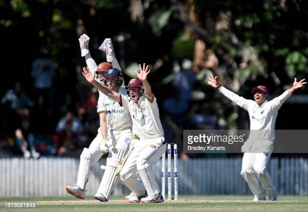 Jimmy Peirson, Bryce Street and Usman Khawaja of Queensland successfully appeal for the wicket of Baxter Holt of New South Wales during day four of...