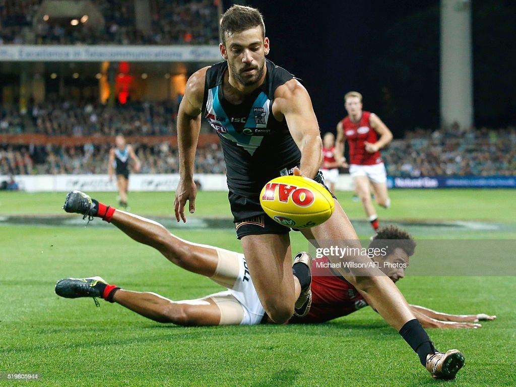 AFL Rd 3 - Port Adelaide v Essendon : News Photo