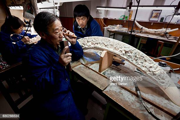 Jin Mao Bone Carving Arts and Crafts a 50 year old Ivory carving factory and the largest of the Chinese Ivory carving concerns Beijing China November...