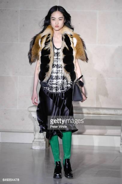 Jing Wen walks the runway during the Louis Vuitton show as part of the Paris Fashion Week Womenswear Fall/Winter 2017/2018 on March 7 2017 in Paris...
