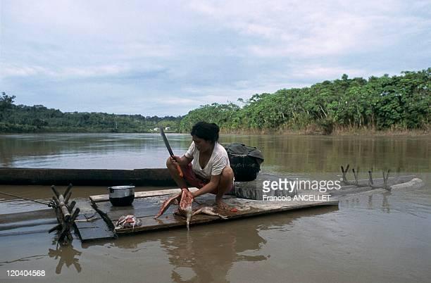 Jivaro indian in Amazonia Ecuador River and rainforest people