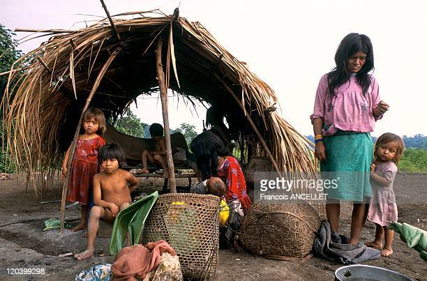 Jivaro indian in Amazonia Ecuador Traditions river and rainforest people