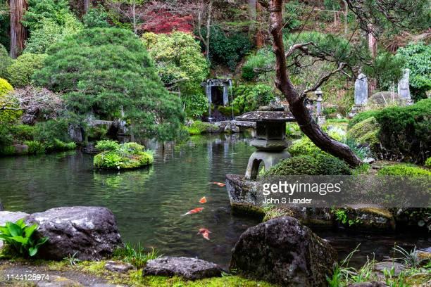 Jizo-ji Temple Pond Garden - Jizo-ji Temple belongs to the Soto Zen sect of Buddhism. There is garden of kaiyu shiki teien style of the early Edo...