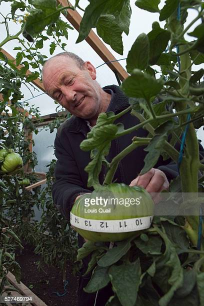 Jo Atherton works a part time at nursery but his passion is for growing giant vegetables He has grown a record breaking carrot 19 2 long and is also...