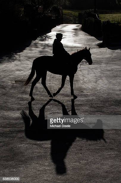Jo CodyBoutcher on Walter White parades in the yard ahead of first lot at Sandhill Racing Stables on March 25 2016 in Minehead England Sandhill...