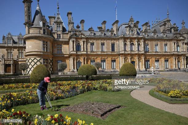 """Jo Wheeler a volunteer gardener works her way along the flower bed cutting the edges of the lawn beside the flower beds on the """"par terre"""" at..."""