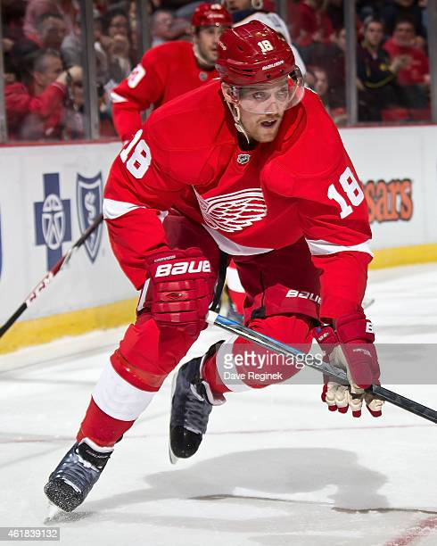 Joakim Andersson of the Detroit Red Wings follows the play during a NHL game against the Buffalo Sabres on January 18 2015 at Joe Louis Arena in...