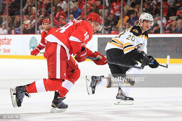 Joakim Andersson of the Detroit Red Wings follows the play next to Daniel Paille of the Boston Bruins during a NHL game on October 15 2014 at Joe...