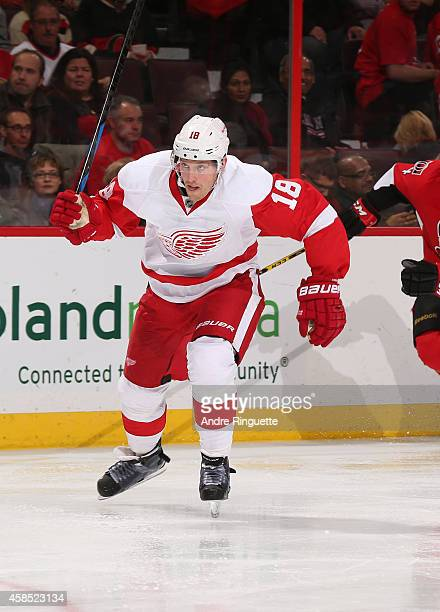 Joakim Andersson of the Detroit Red Wings skates against the Ottawa Senators at Canadian Tire Centre on November 4 2014 in Ottawa Ontario Canada