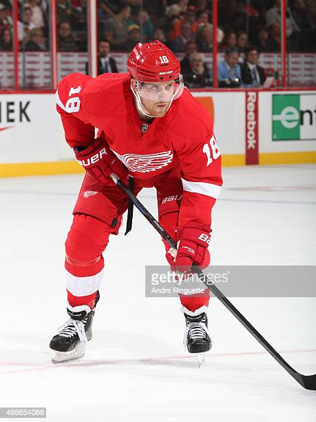 Joakim Andersson of the Detroit Red Wings skates against the Ottawa Senators at Canadian Tire Centre on October 31 2015 in Ottawa Ontario Canada