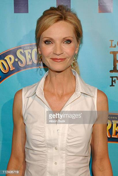 Joan Allen during 2005 Los Angeles Film Festival Yes Screening Arrivals at Directors Guild of America in Los Angeles California United States