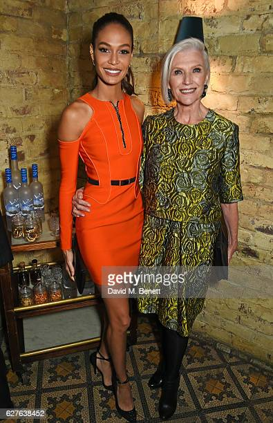 Joan Smalls and Maye Musk attend The Fashion Awards in partnership with Swarovski nominees' lunch hosted by the British Fashion Council with Grey...