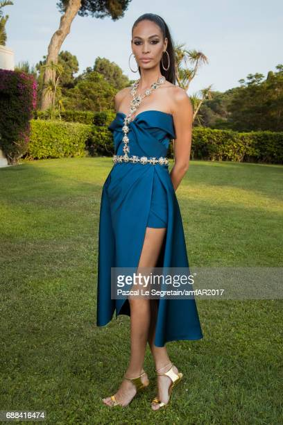 050c70ca66f Joan Smalls attends the amfAR Gala Cannes 2017 at Hotel du CapEdenRoc on  May 25 2017