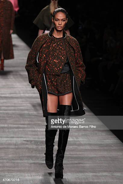 Joan Smalls walks the runway during the Fendi show as a part of Milan Fashion Week Womenswear Autumn/Winter 2014 on February 20 2014 in Milan Italy