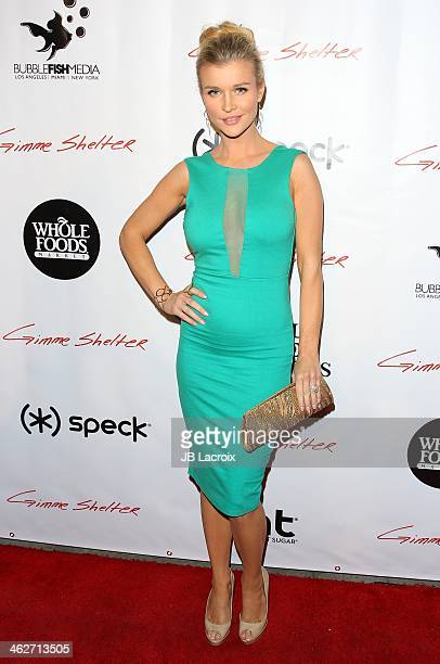 Joanna Krupa attends the 'Gimme Shelter' Los Angeles Premiere held at at the Egyptian Theatre on January 14 2014 in Hollywood California