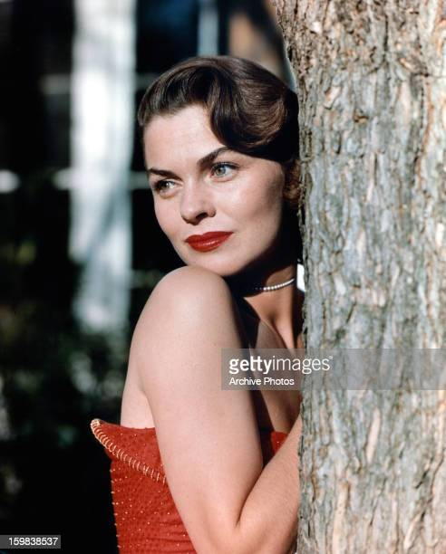 Joanne Dru peeks from behind a tree in a scene from the film 'Sincerely Yours' 1955